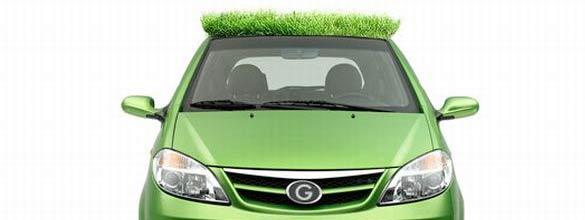Automobile con Tetto Verde