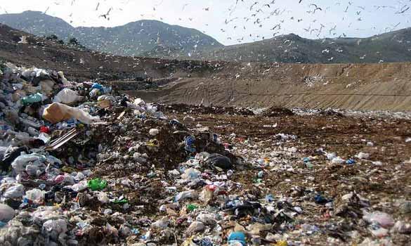 Iniziativa Brasile per trasformare i rifiuti in verdure